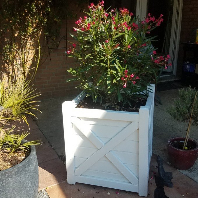 Flowerbox Ymer